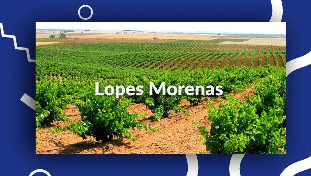 Bodegas Lopes Morenas